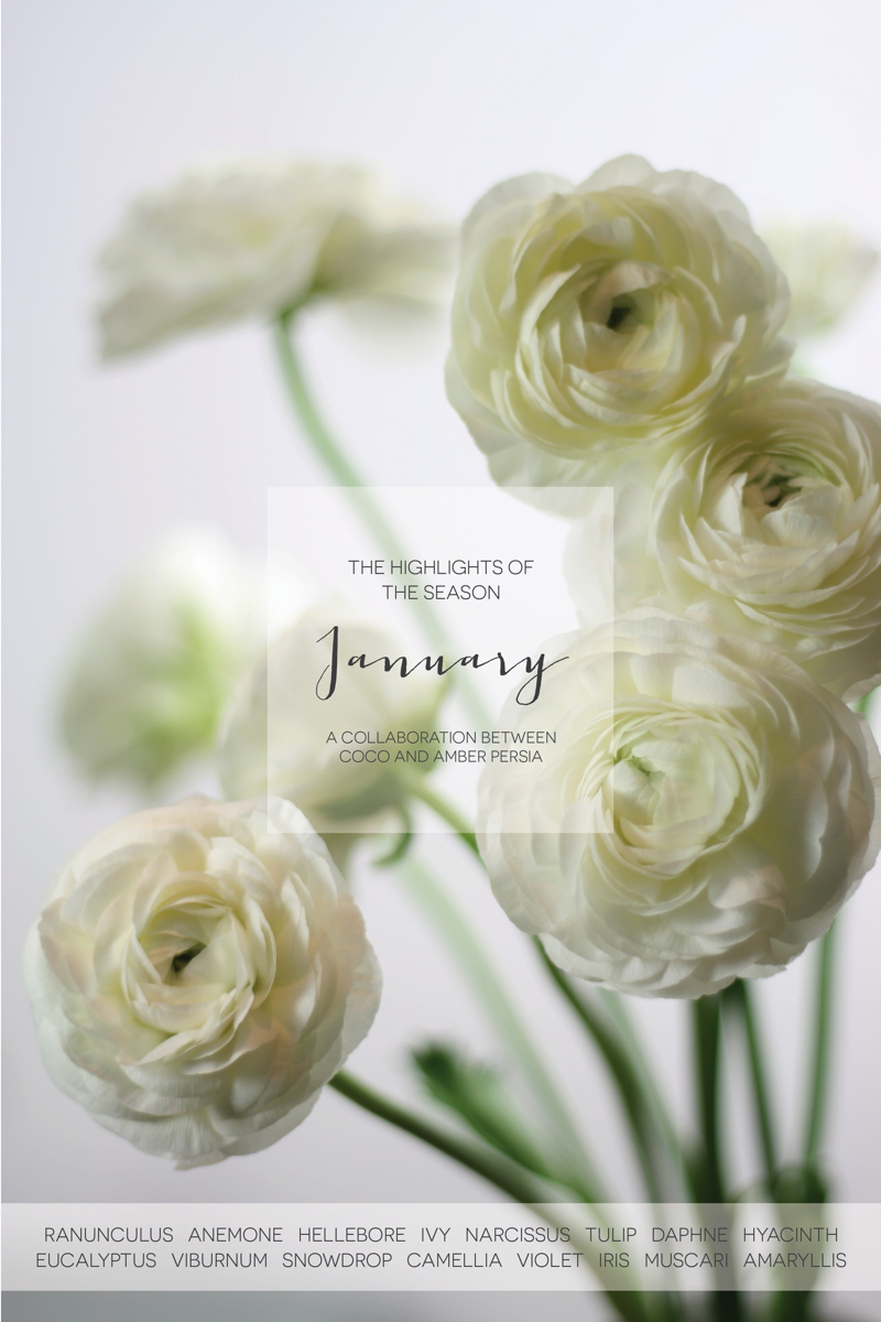Coco Wedding Venues - January Floral Highlights.