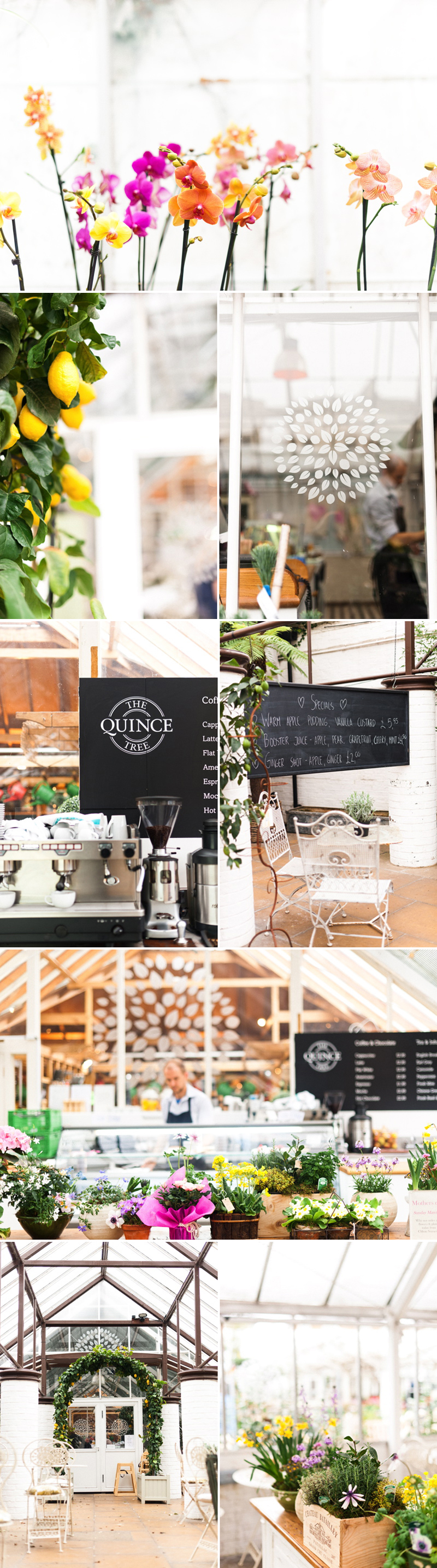 coco wedding venues-anushe-low-photography-clifton-nurseries-london wedding venue.