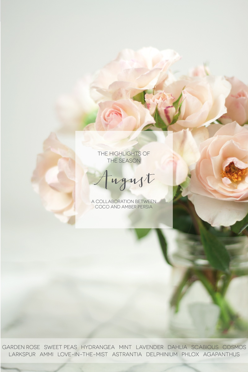coco-wedding-venues-wedding-flower-inspiration-august-floral-highlights-by-amber-persia-flowers-and-events