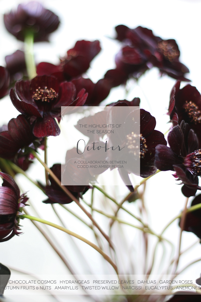 coco-wedding-venues-wedding-flower-inspiration-october-floral-highlights-by-amber-persia-flowers-and-events