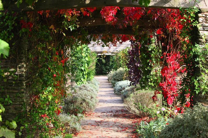 Coco wedding venues slideshow - wedding-venues-in-somerset-hestercombe-gardens-6