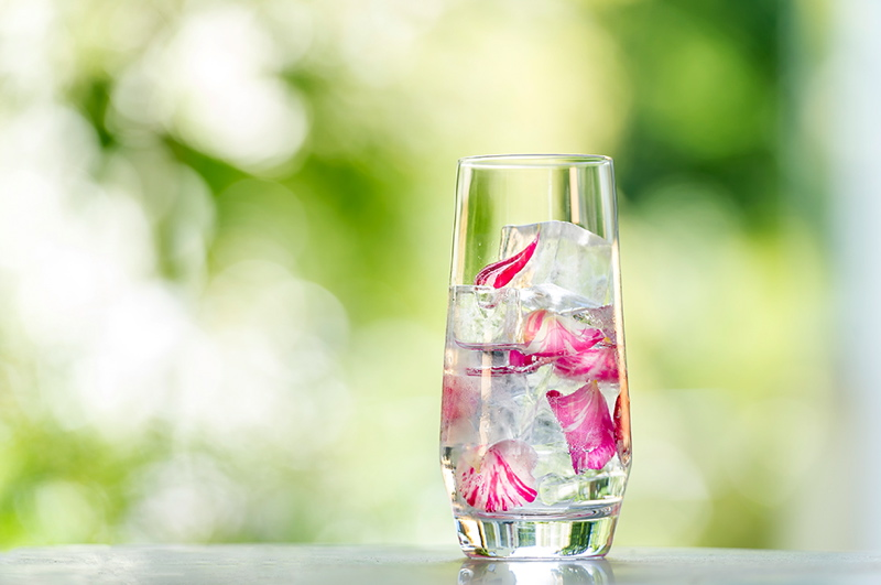botanical-wedding-food-edible-flower-cocktails-devon-wedding-venue-3
