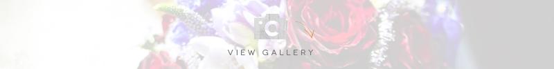 wedding-venues-in-devon-clovelly-village-weddings-view-gallery