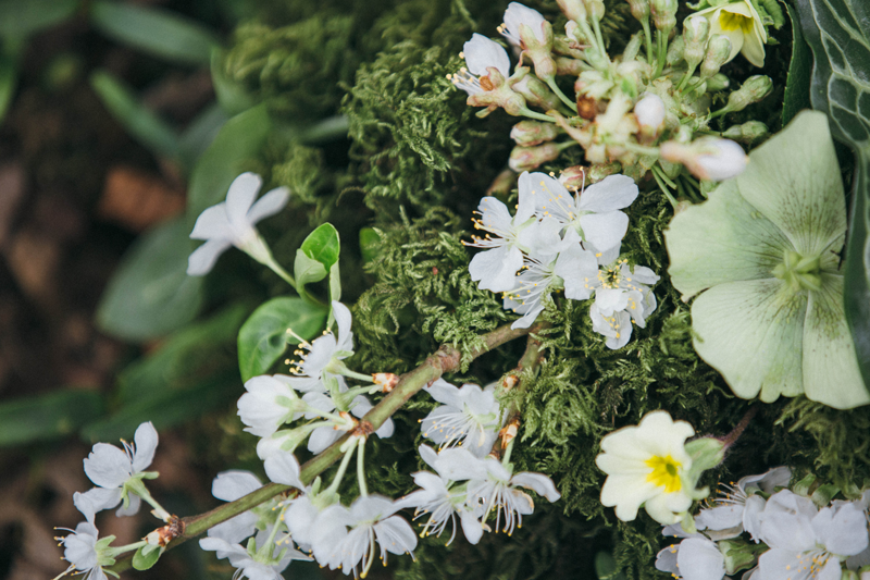 spring-wedding-offer-narborough-hall-gardens-norfolk-3