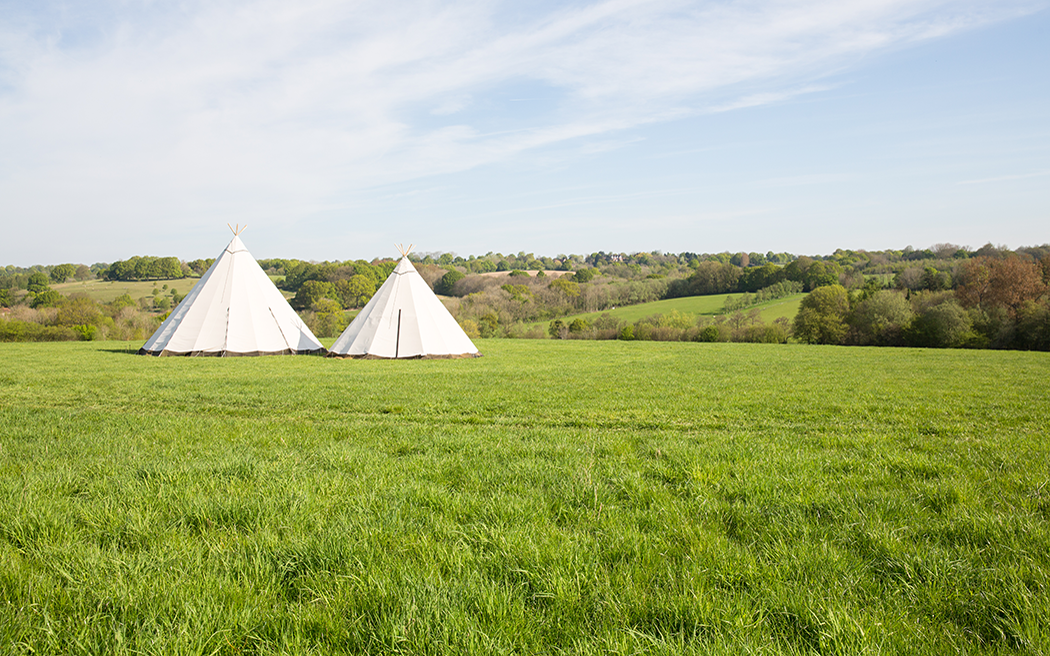 Coco wedding venues slideshow - woodland-wedding-venues-in-kent-fern-and-field-polly-coupee-photography-006