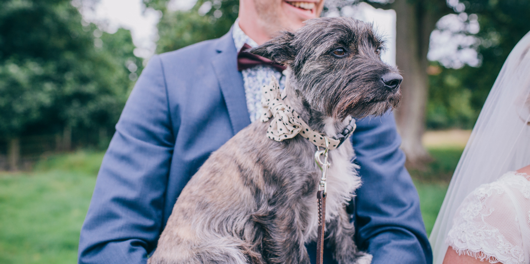 pet-friendly-wedding-venues