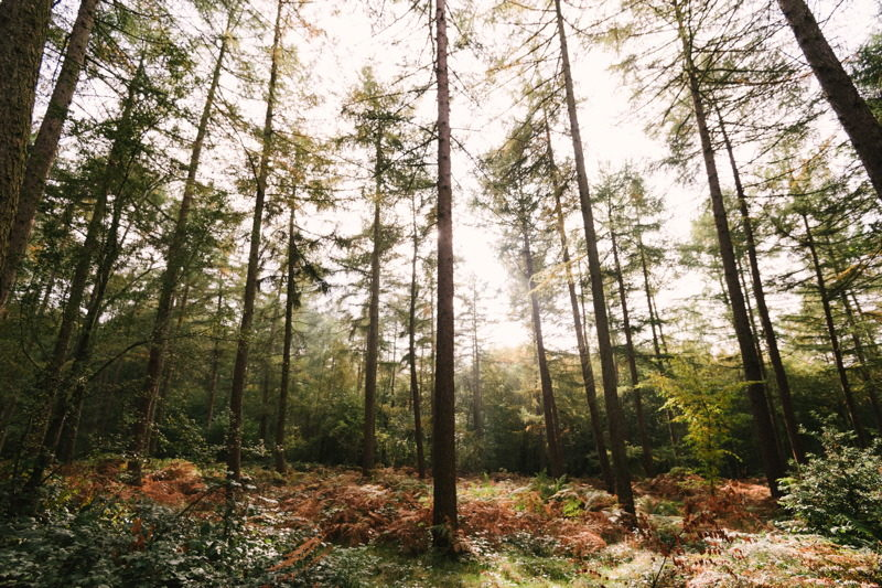 woodland-wedding-venues-in-buckinghamshire-hannah-duffy-photography-17