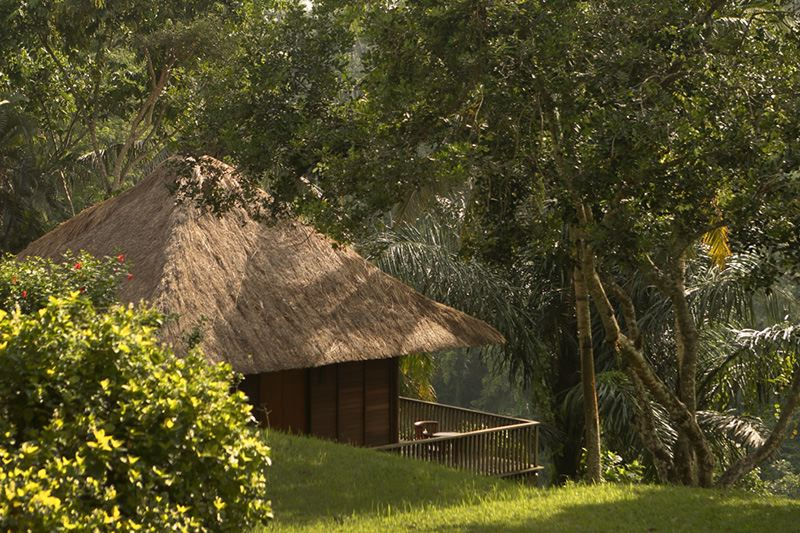 Images courtesy of Alila Ubud.