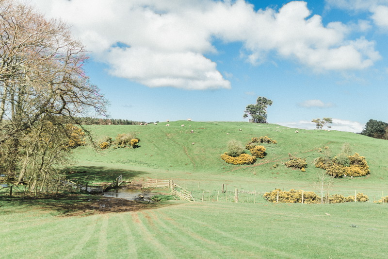 Image courtesy of Doxford Barns.