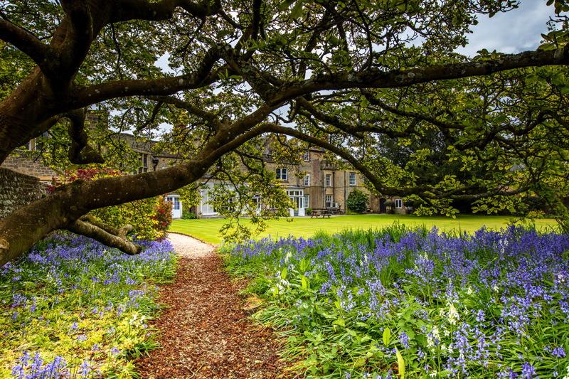 Image courtesy of Capron House at Cowdray Park.