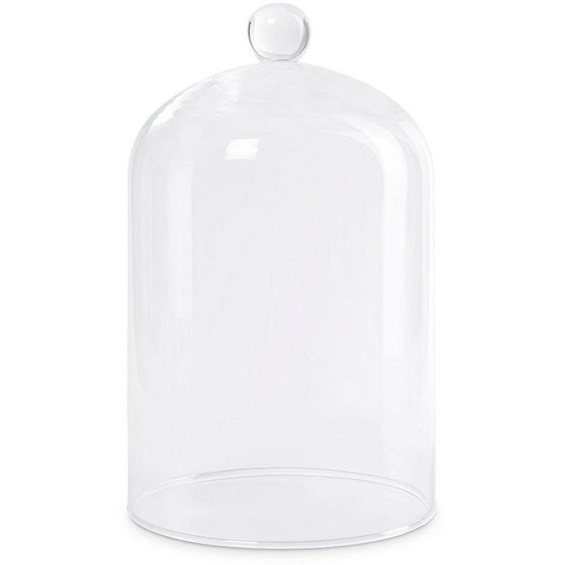 Glass Display Cloche