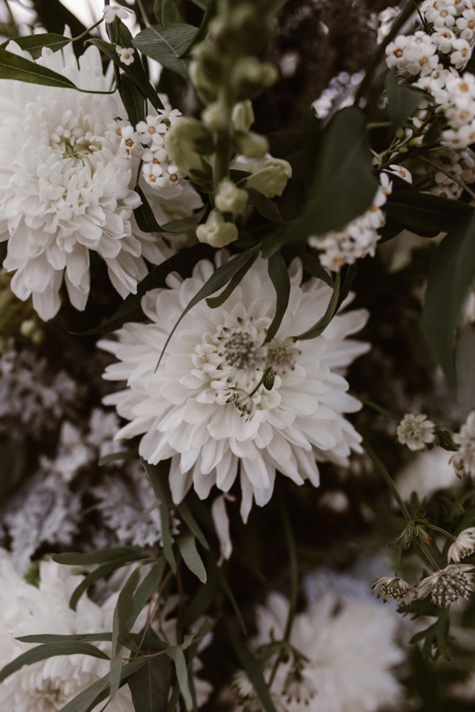 Image by Agnes Black.