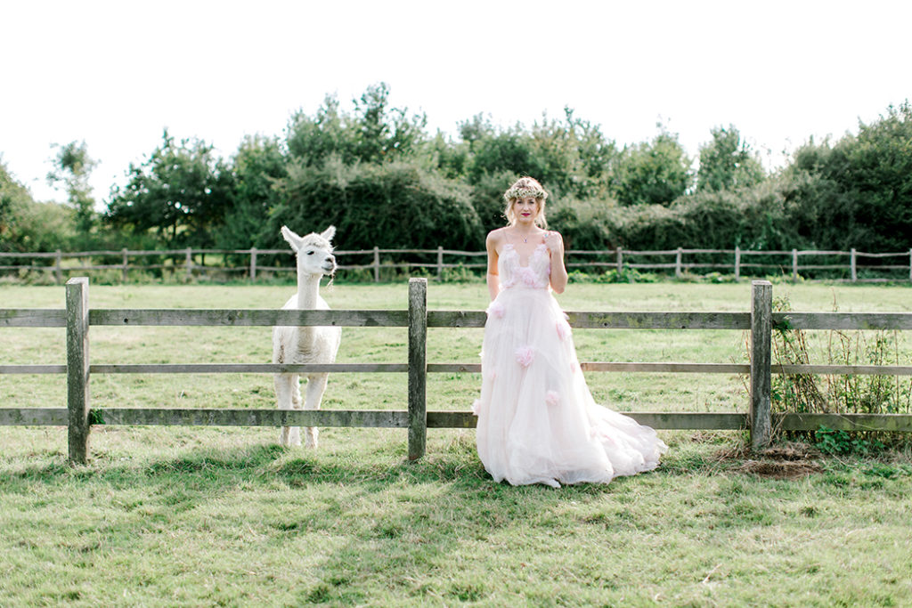 Image by Helen Cawte Photography.