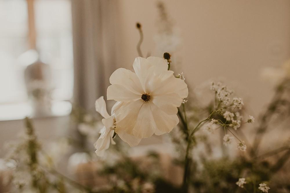 Image by Nesta Lloyd Photography.